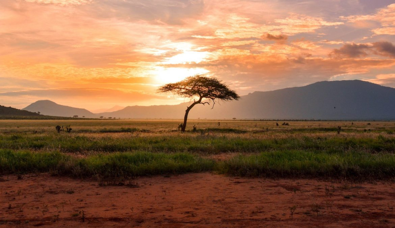 E-wiza do Kenii - jak uzyskać